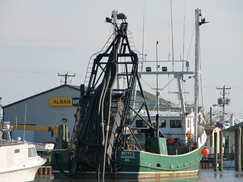 sea clam dredge