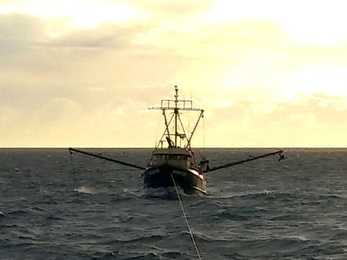 F/V Hunter  (credit: U.S. Coast Guard)