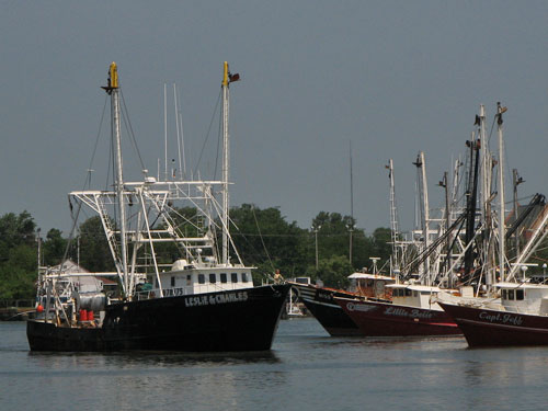 newport news va commercial fishing boats