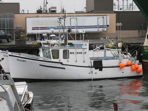 novi fishing boat