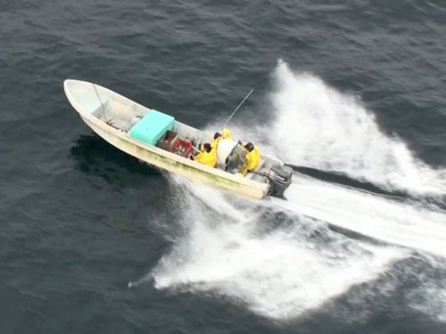 Panga (credit: U.S. Coast Guard)