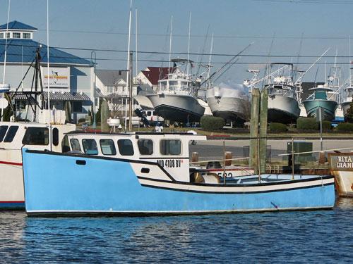 Novi Boat (longline)