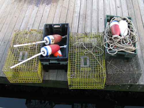 inshore lobster pots buoys