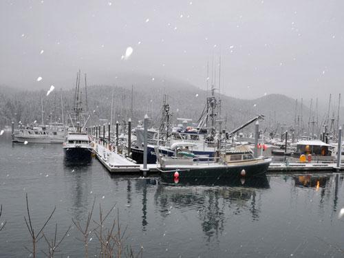 Juneau Alaska Harbor ((photo credit: U.S. Coast Guard)
