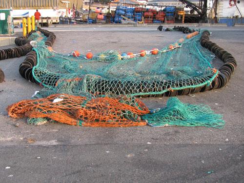 Trawl Net and Rock Hopper Gear