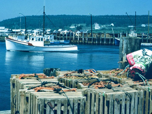 wooden lobster traps