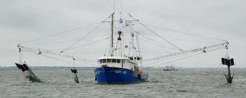 Mississippi Sound shrimp boats