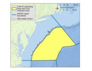 MAFMC Deep Sea Coral Protection Area
