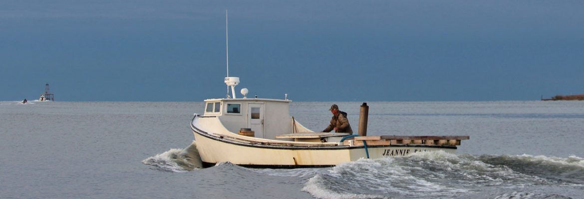 chesapeake bay deadrise boat