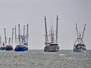 gulf of mexico shrimp boats