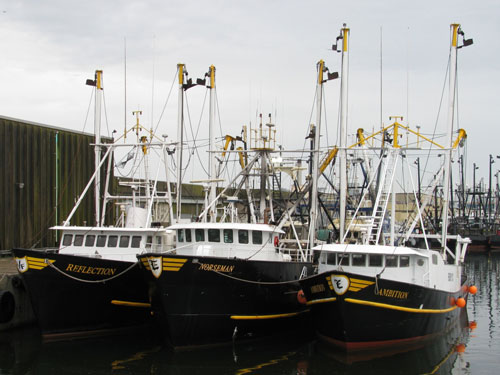 Limited Entry Scallop Boats