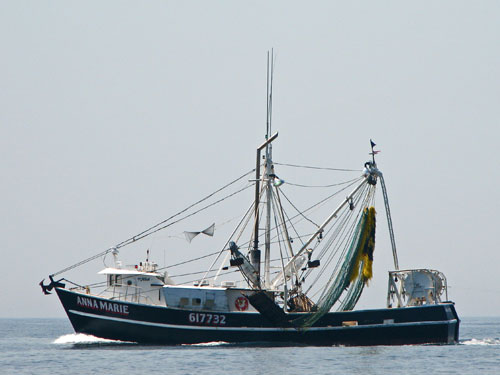 F/V Anna Marie at sea