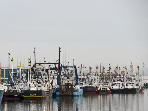New Bedford Scallop Boats and Other Commercial Fishing Boats