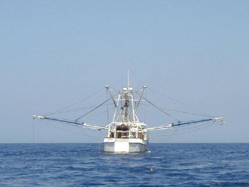 Bottom Trawler fishing