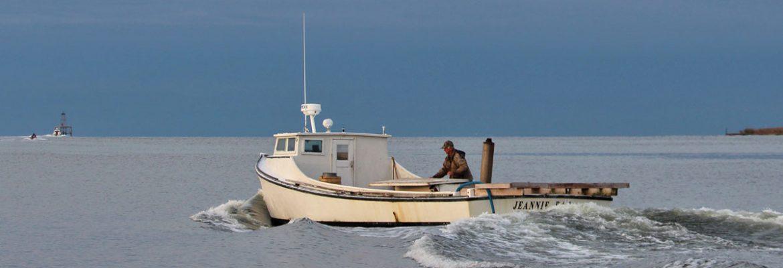 chesapeake bay deadrise boat