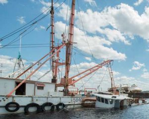 Commercial Fishing Vessels Sunk near Jacksonville FL
